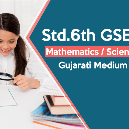 Excellence / Std 6 GSEB